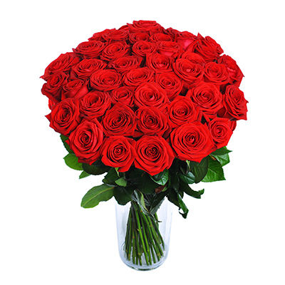 Red roses - design bunch of flowers