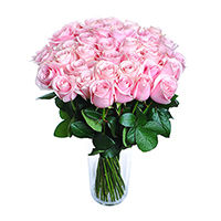 Pink roses - design bunch of flowers