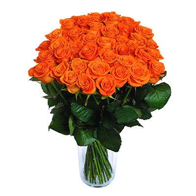 Orange roses - design bunch of flowers