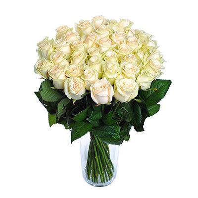 Bílé růže - sestavit kytici